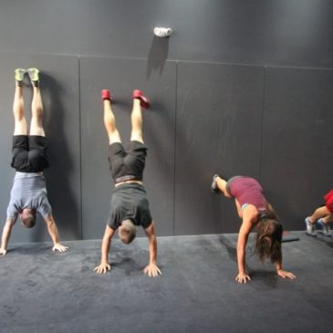 Tuesday 1st August: WOD